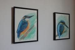 obrazki ptaków na ścianę